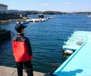 アオサ摘み取りと間崎島路地歩きを体験してきた!