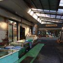 【伊勢エビの町】浜島町にある魚屋、【八百竹商店】さんに行って来ました!